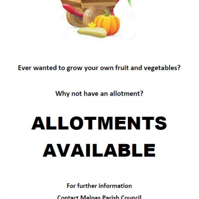 Allotments Aug 2020
