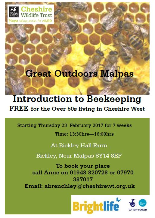 bee keeping 2017